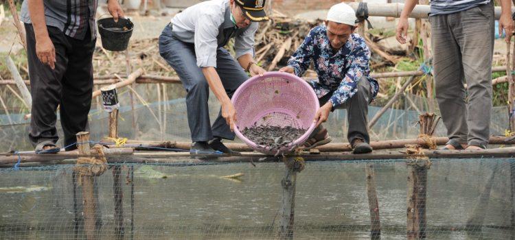 [FOTO]: Pelepasan Bibit Ikan Lele Milik Koperasi Meukulam Lambaro Skep